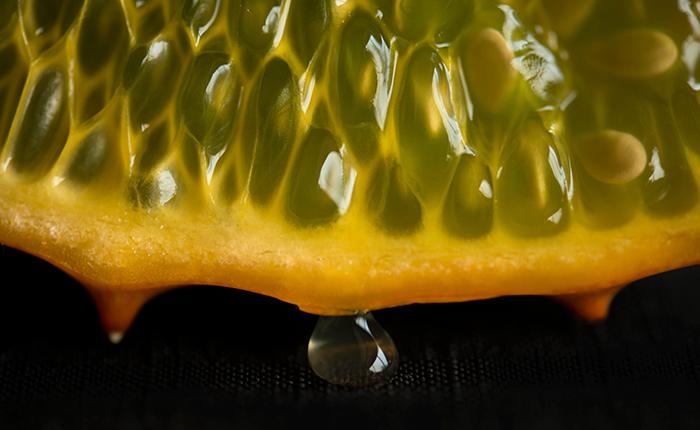 Nikon D800, Nikkor 105mm, horned melon, still life, photography, jennifer koe