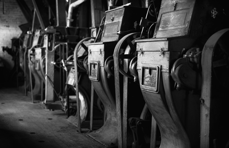 Nikon D800, history, mill, photography, industry, jennifer koe